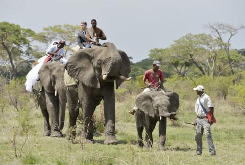 18 фотографий после которых хочется чтобы Свадьба была в Зимбабве!