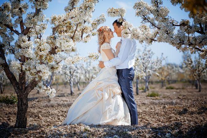 kamernaya-svadba Что такое камерная свадьба?