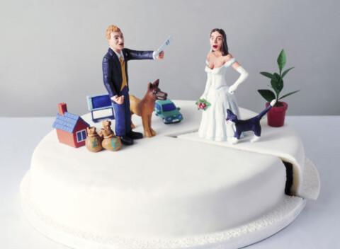 tort-po-sluchayu-razvoda-480x352 Свадьба: идеи, букеты, декор и торты