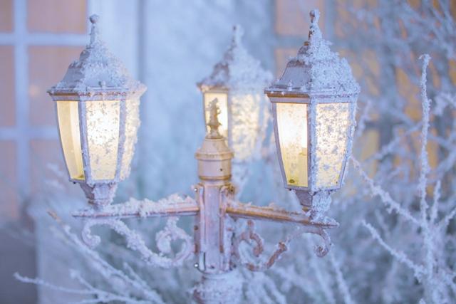 IMG_0356 Декор зимней свадьбы от декоратора Лидии Симоновой
