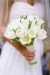 Ew5rwd60ywg-kopiya-100x150 Тюльпаны в декоре весенней свадьбы
