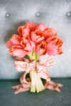 amjpWCRm8SY-kopiya-100x150 Тюльпаны в декоре весенней свадьбы