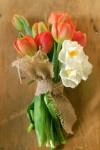 tulip_04-100x150 Тюльпаны в декоре весенней свадьбы