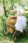Alpy19-100x150 Тематические свадебные фотосессии: Альпы