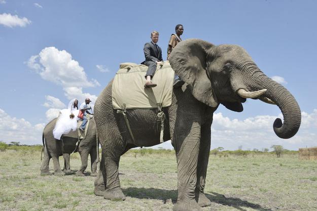 Zimbabve-4 18 фотографий после которых хочется чтобы Свадьба была в Зимбабве!