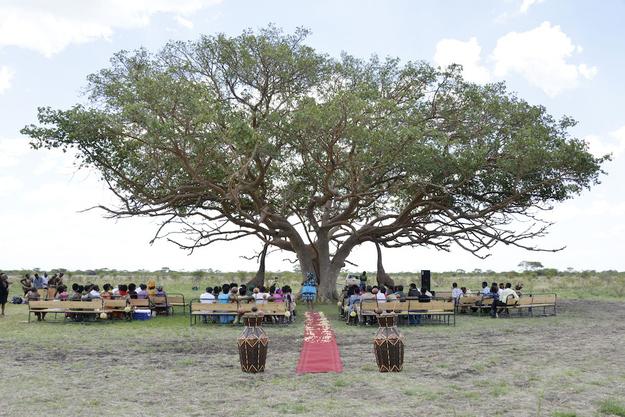 Zimbabve-7 18 фотографий после которых хочется чтобы Свадьба была в Зимбабве!