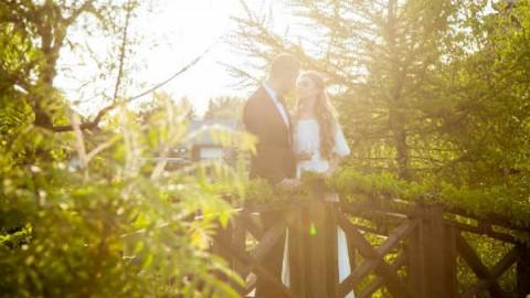 Солнечная свадьба Ильи и Елены с агентством Wedding People